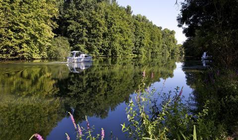 Fleuve Saint-Brice